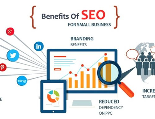 Affordable SEO for Small Business